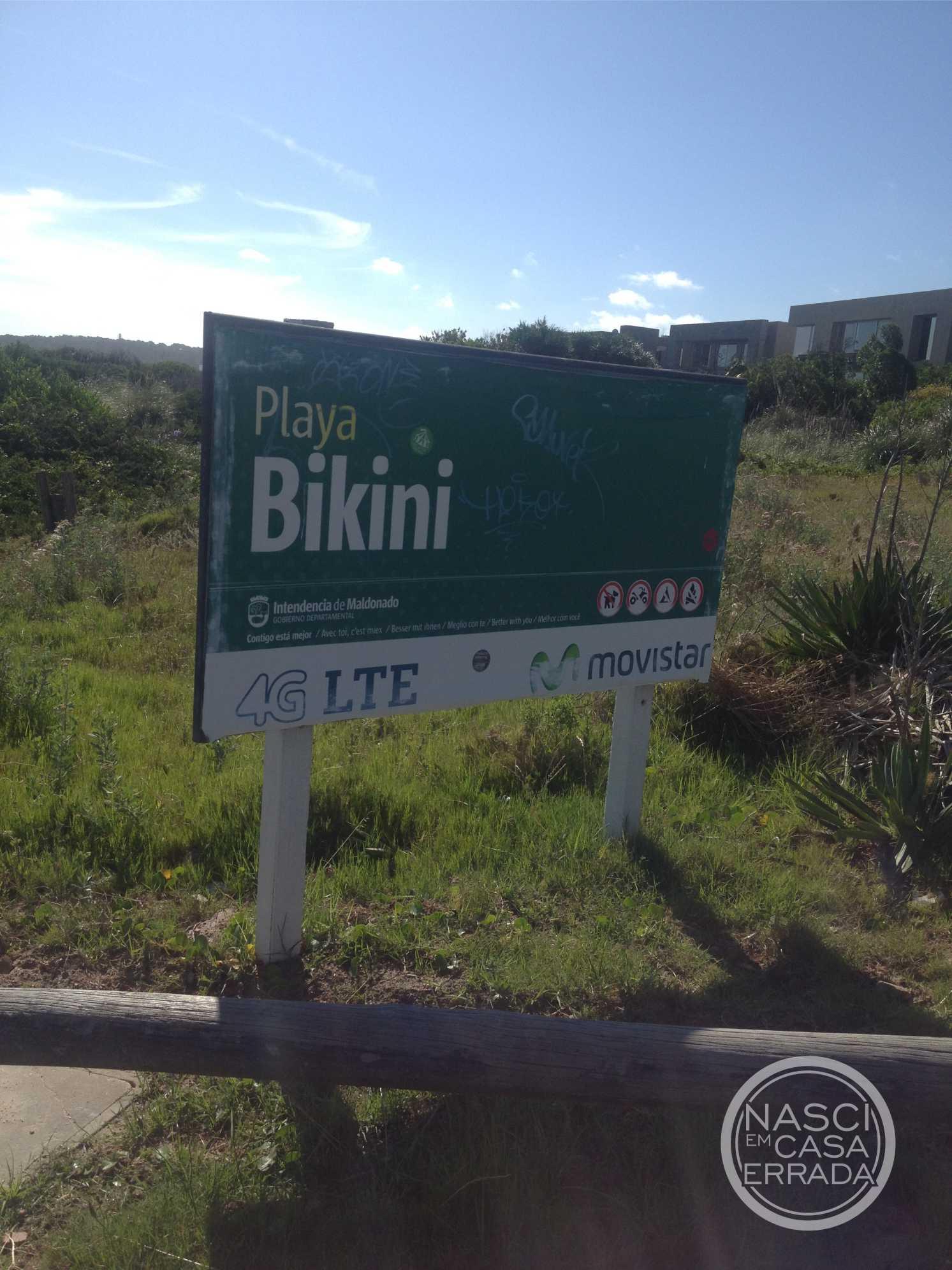 bikini 04